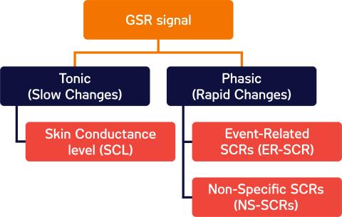 GSR signal components