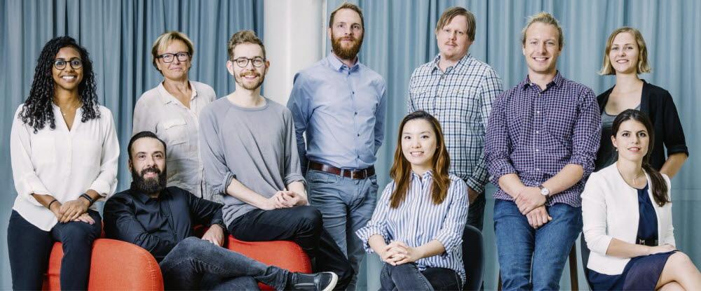 Insight team