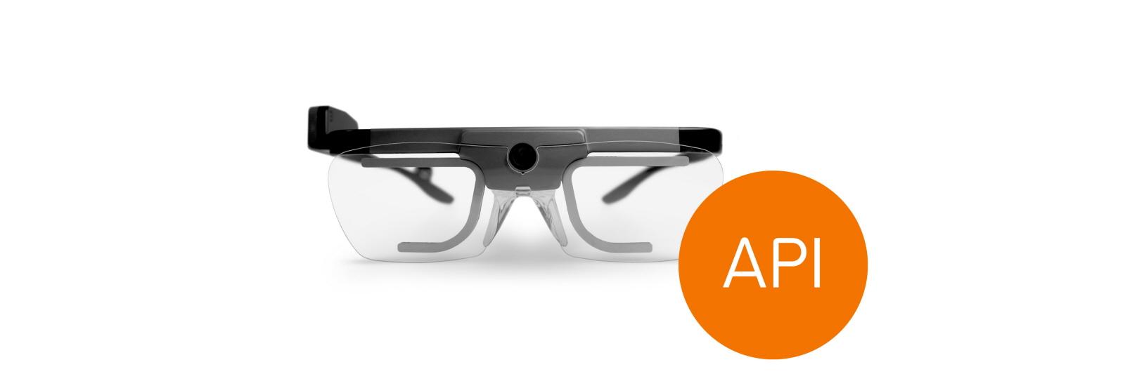 Tobii Pro Glasses 2 Api